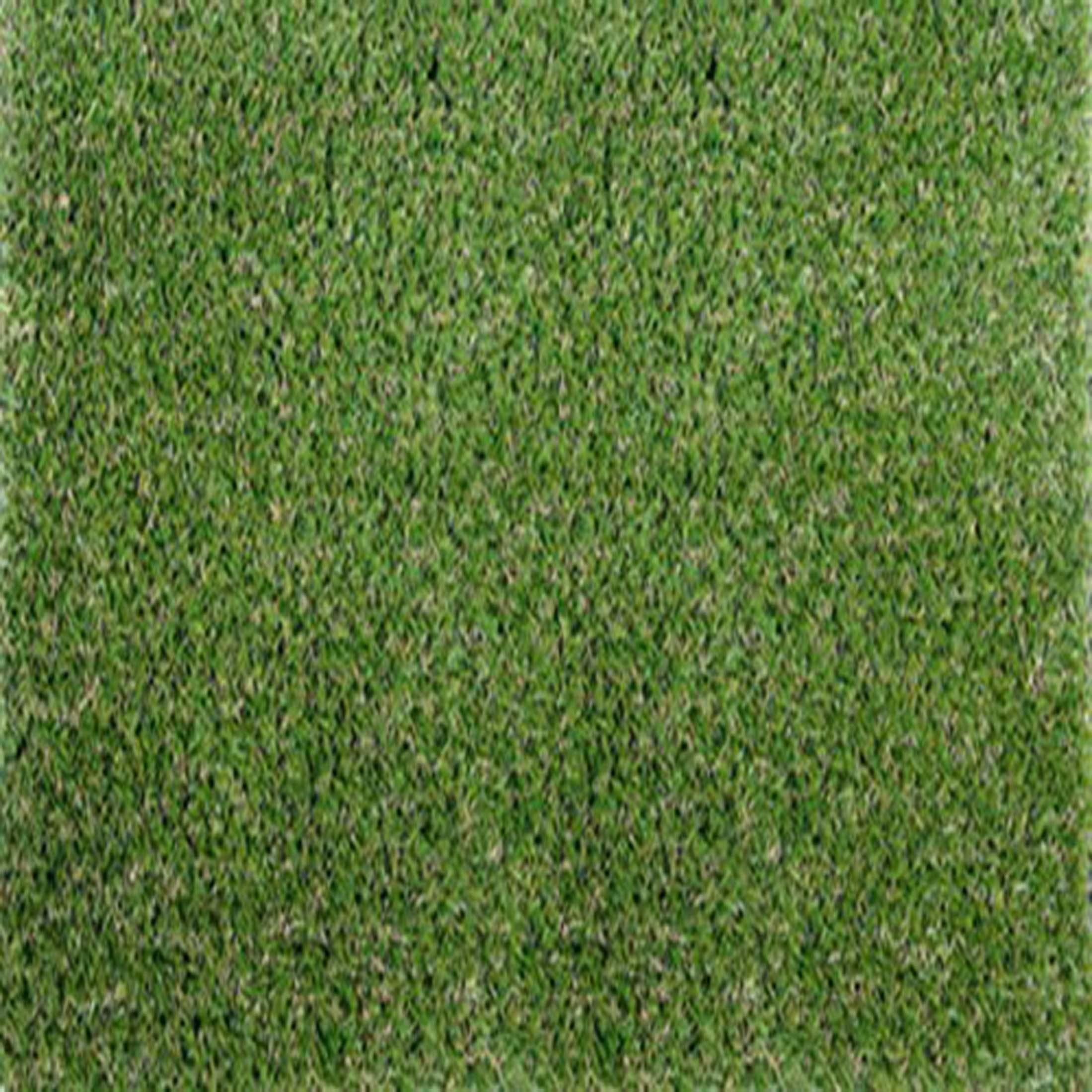 Smart-grass_500_50GI9