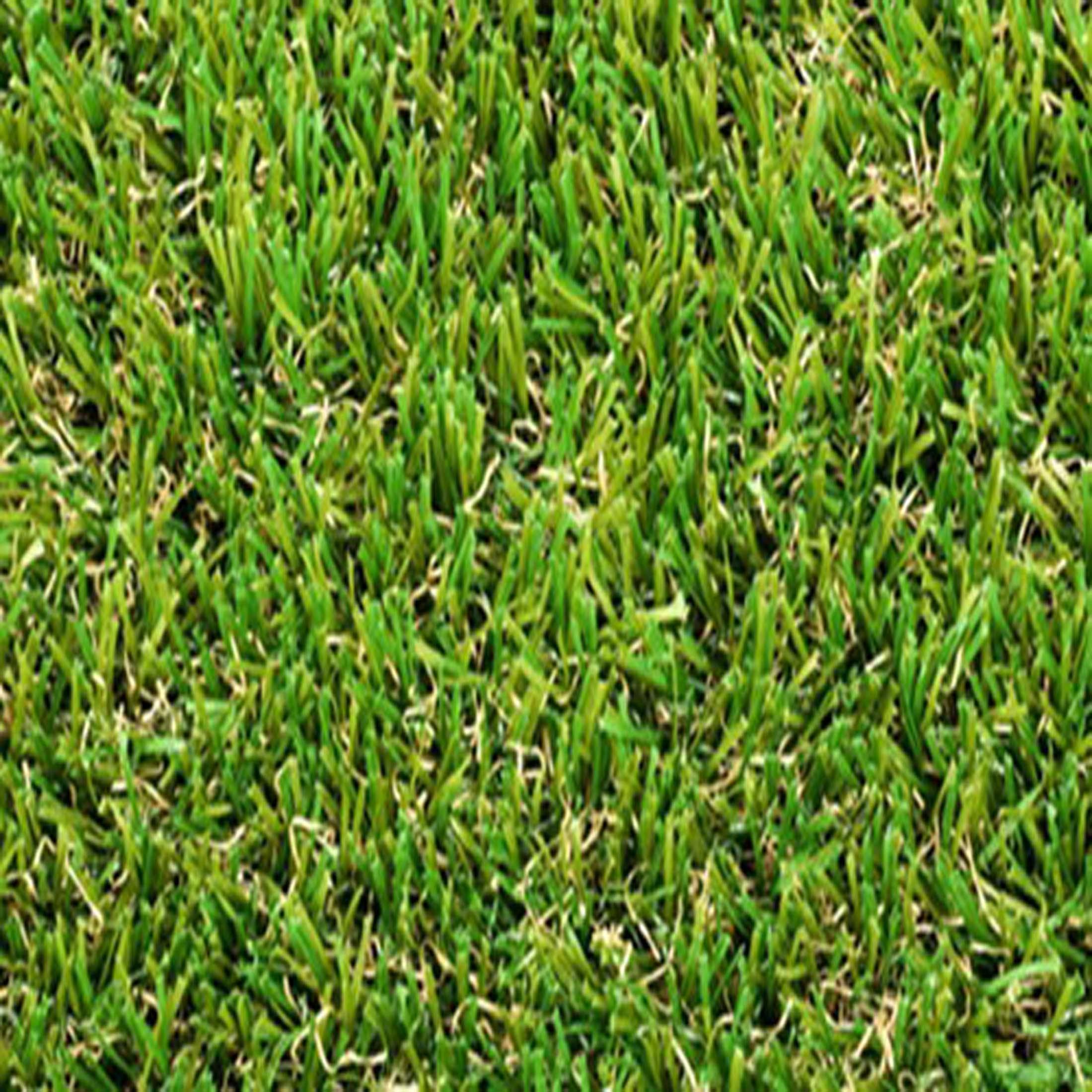 Smart-grass_500_50GIA