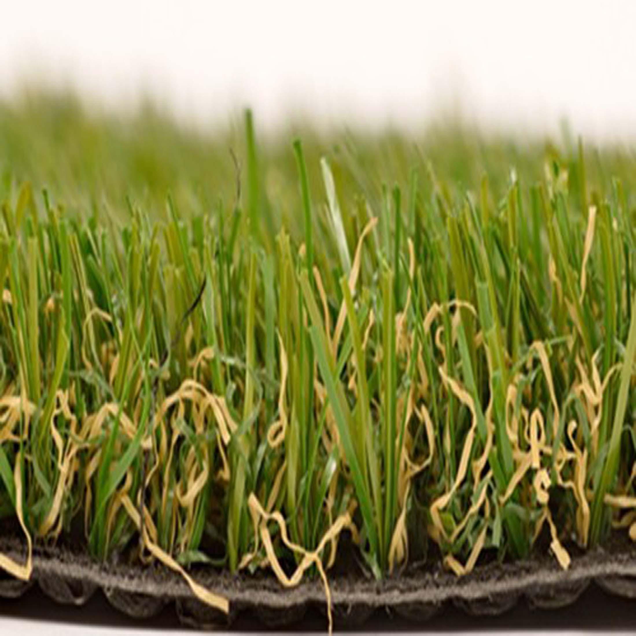 Smart-grass_500_50GIB