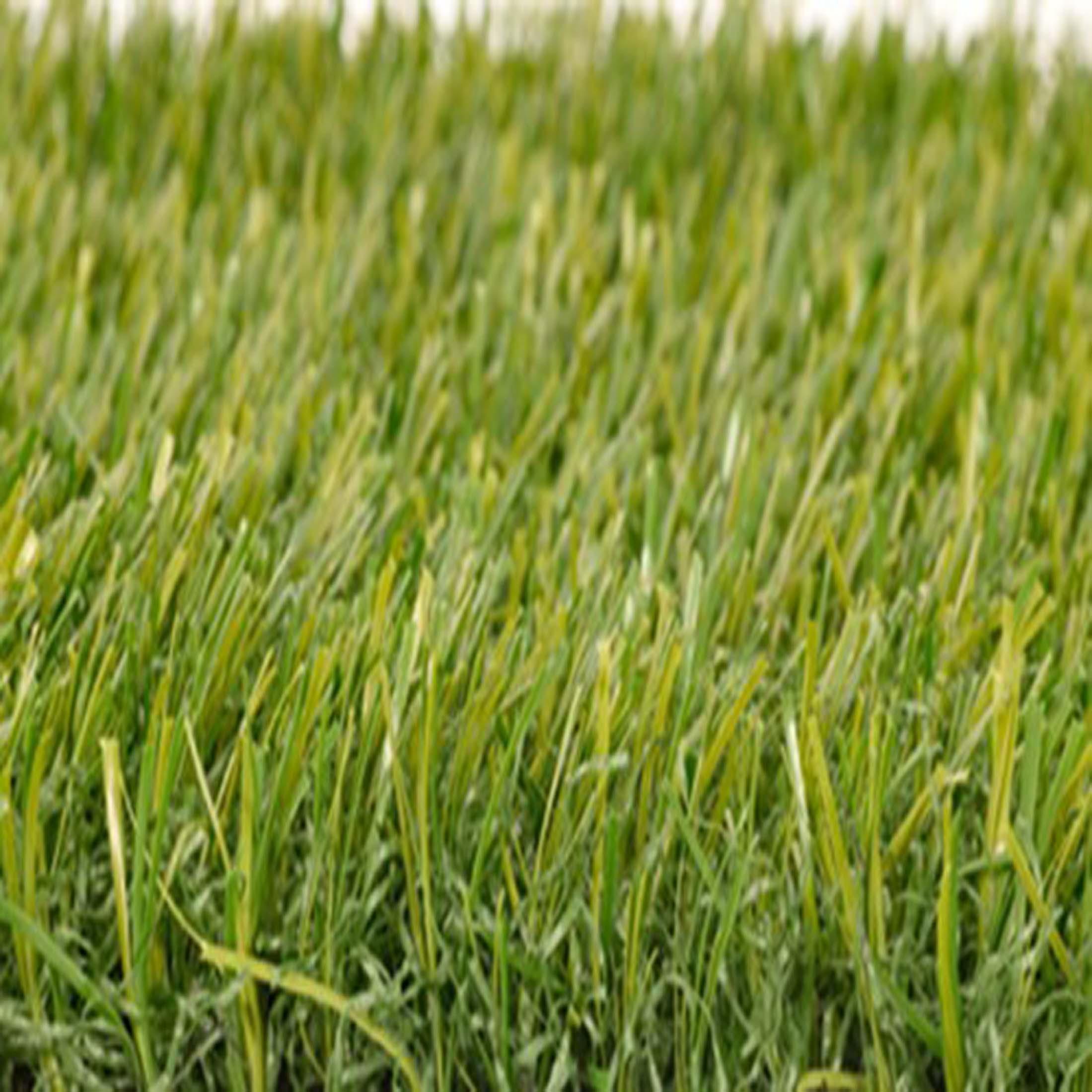 Smart-grass_500_50GIC