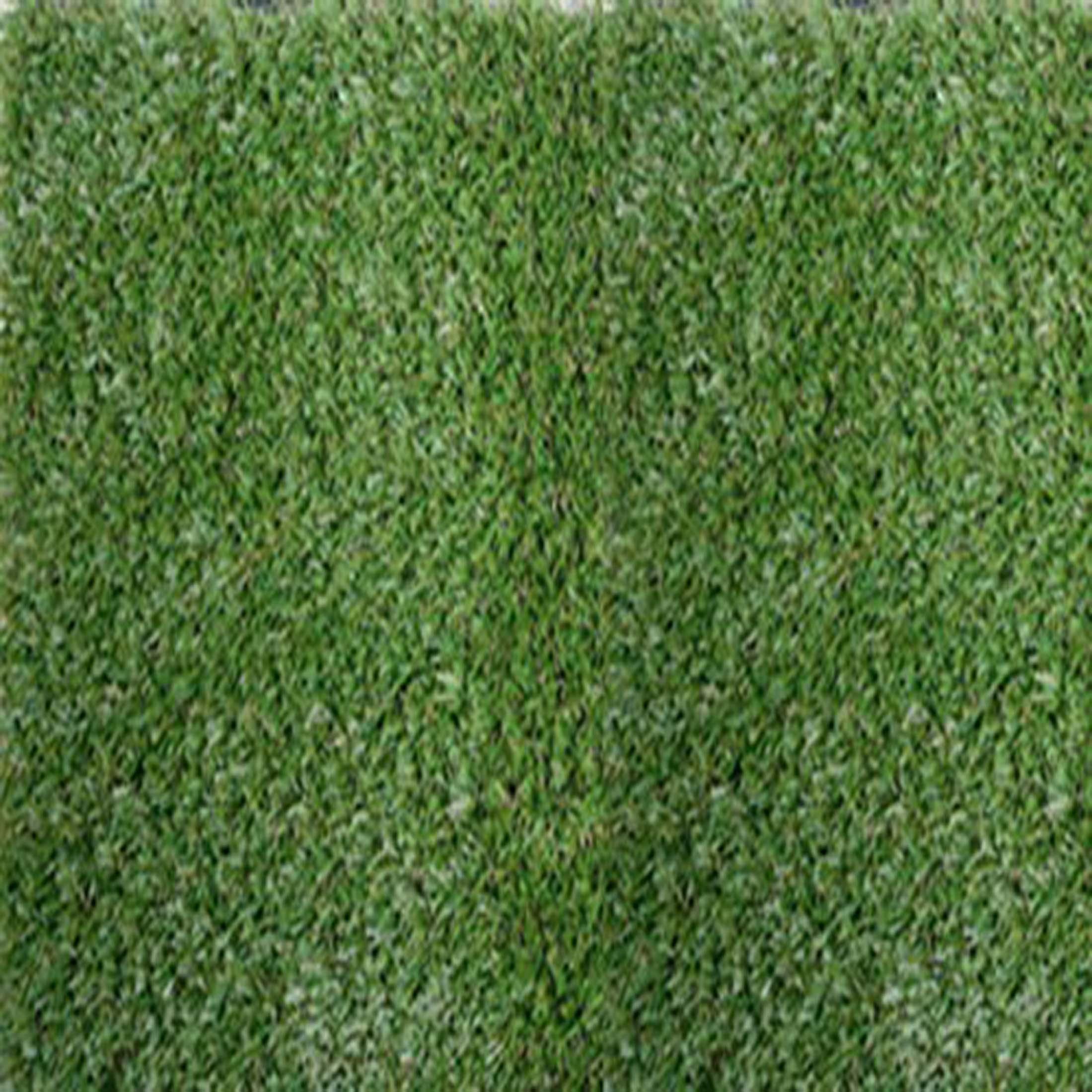 Smart-grass_500_50GIE