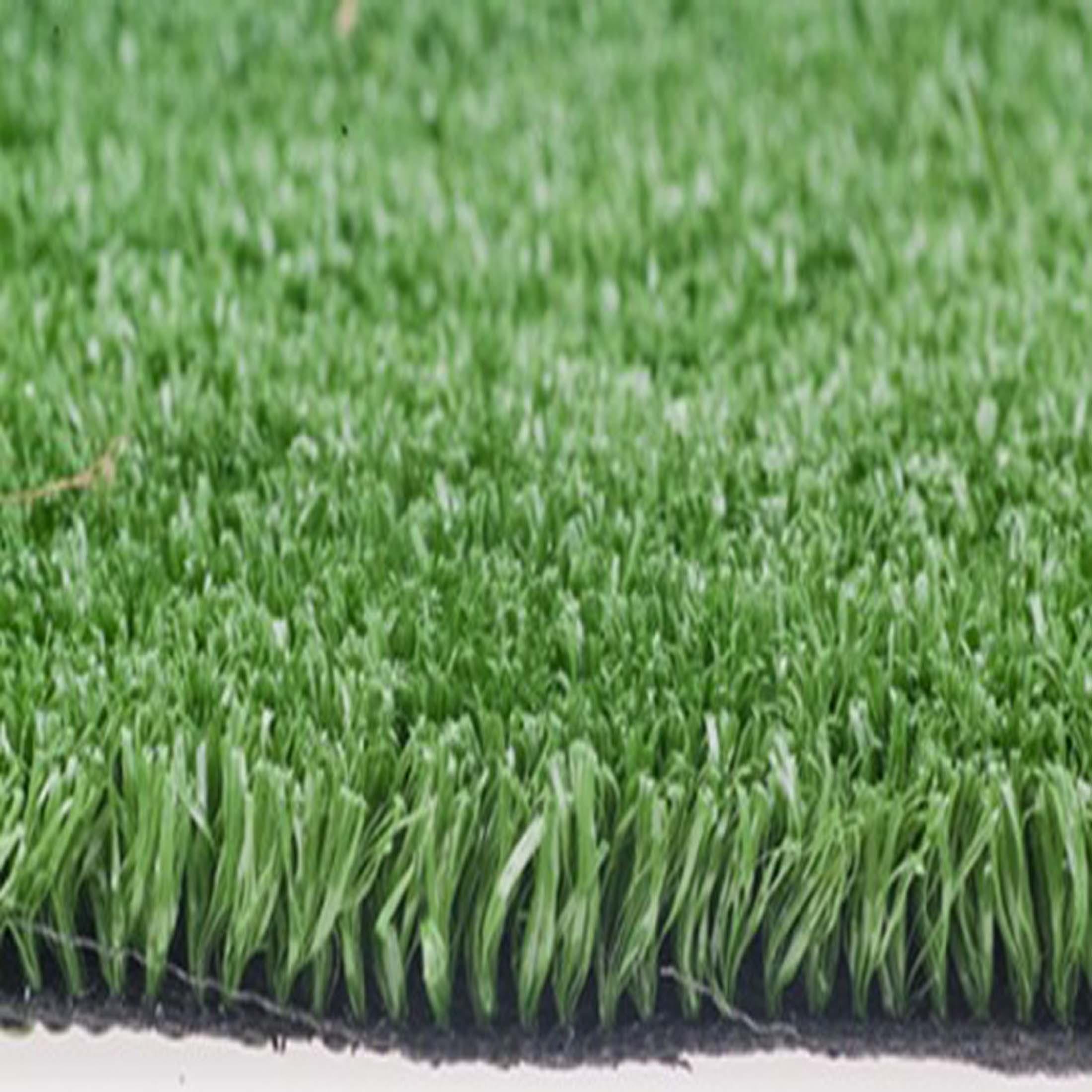 Smart-grass_500_50GIF