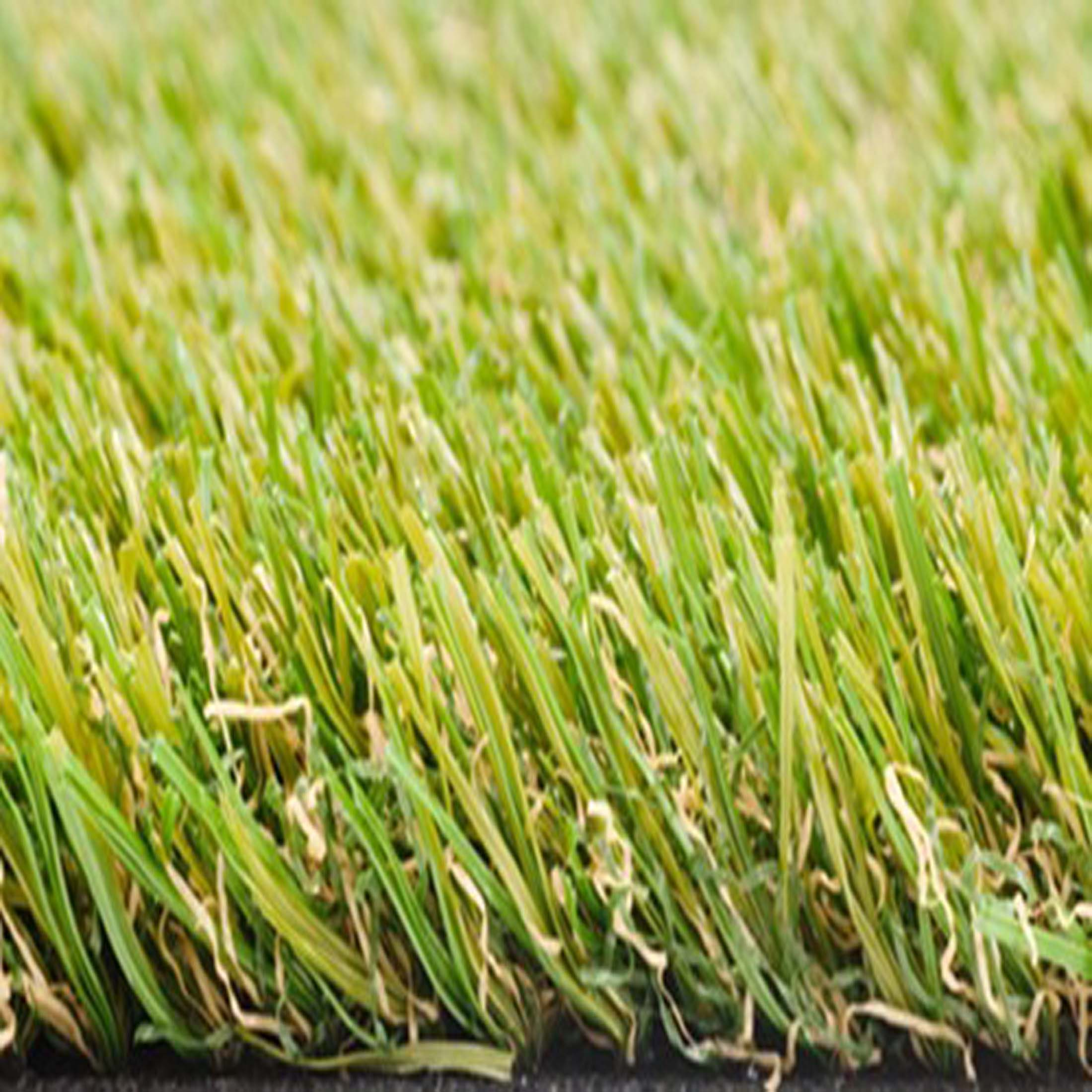 Smart-grass_500_50GIG