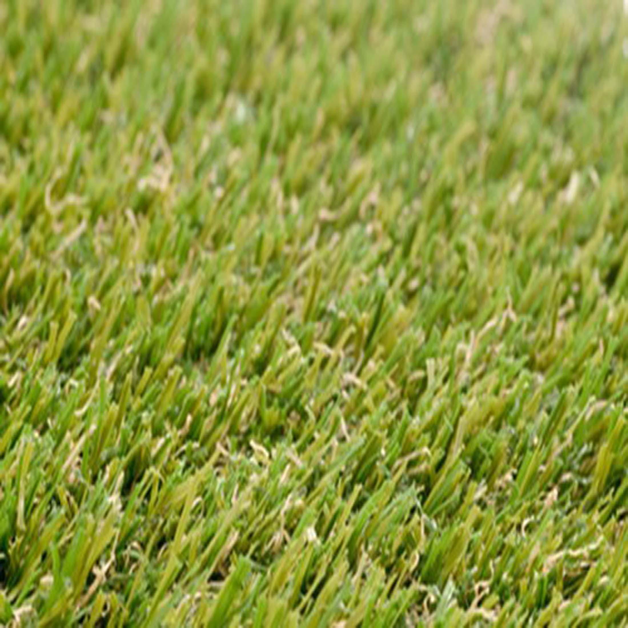 Smart-grass_500_50GIH